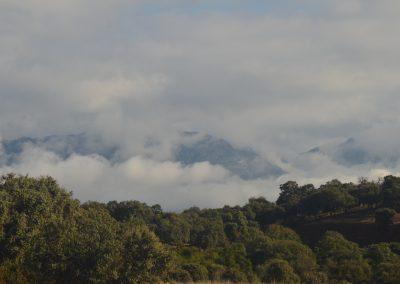 Azuel - C.R. Mirador de los Tomillos