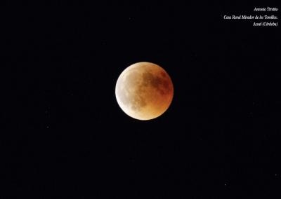 Luna de Sangre Azuel